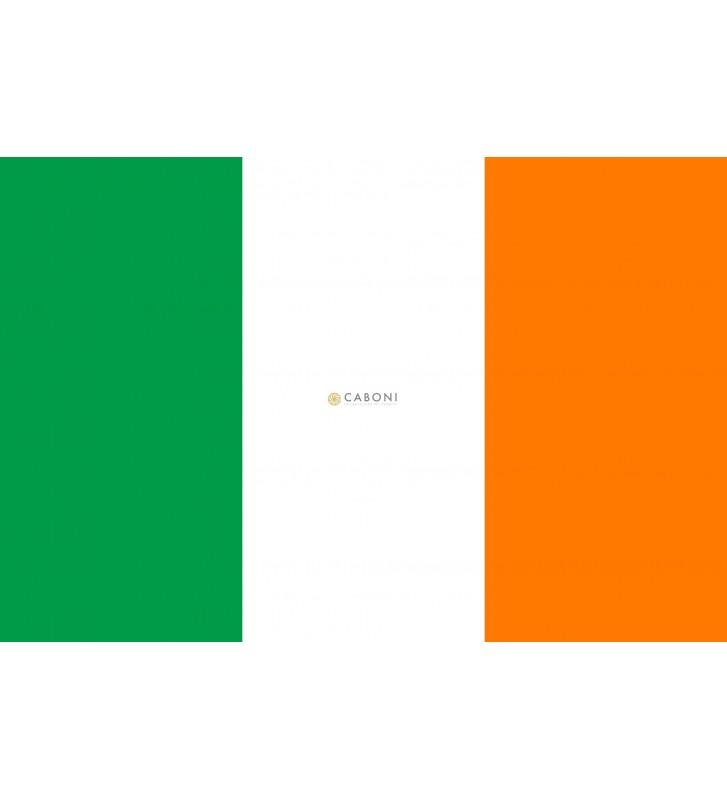 Bandiera Irlanda 100x140