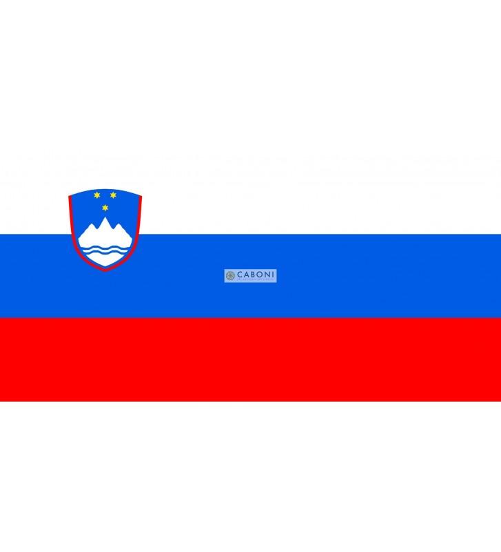 Bandiera Slovenia 100x140